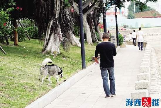厦门市城市管理行政执法局呼吁市民文明养狗、